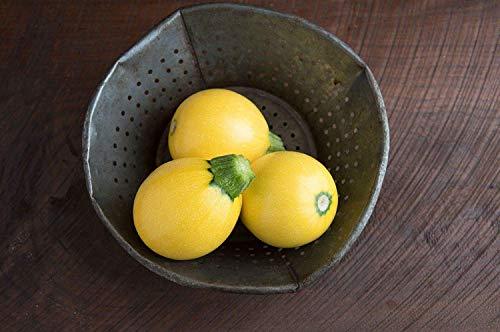 Potseed Samen Keimung: 50 Seeds: USA One Ball Mini Squash 25-200 Samen