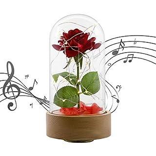Asommet Upgraded Automatisch rote Seidenrose und LED-Licht mit gefallenen Blütenblättern in Glaskuppel auf Holzsockel für Zuhause, Urlaub, Party, Hochzeit, Jahrestag