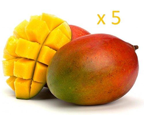 crazygadgetr-e-shisha-flavour-refill-liquid-juice-10ml-x-5-mango