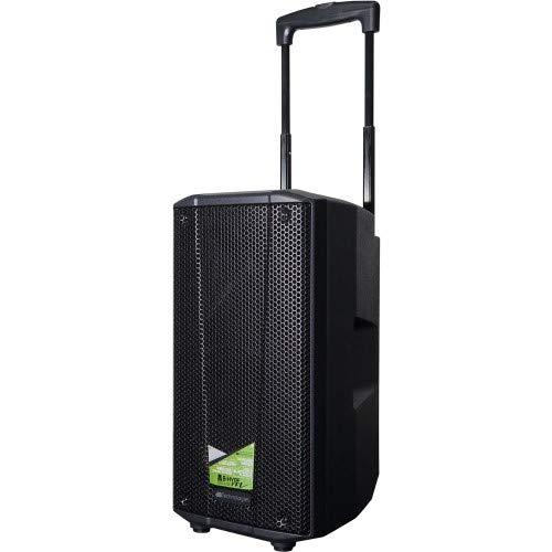 dB technologies B-Hype Mobile HT - Mobiler Speaker mit Handheld (B Mobile)