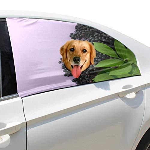Plsdx Kleine Bitter Holunder Pet Hund Sicherheit Autoteil Fahrzeug Auto Fenster Zaun Vorhang Barrieren Protector Für Baby Kind Sonnenschutz Abdeckung Universal Fit SUV -