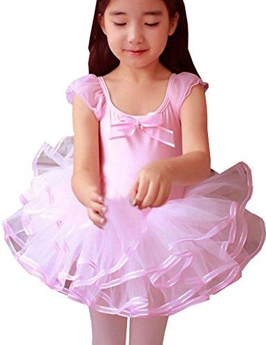 DongDong Mädchen Prinzessin Ballettröckchen Ballett Tanz (Kleid Für Elsa Kleinkinder)