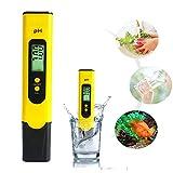 Volwco PH Meter PH Tester Pen 0.01 PH Exactitud Calidad del Agua Probador con ATC 0-14 Rango de medición con Caja de plástico para Agua de la casa, hidroponía, acuarios,...