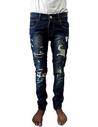 Style Rocks Men's Casual Cotton Regular Fit Jeans (SRJ-04_Blue)