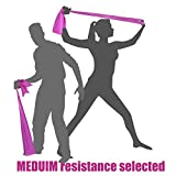 Sports Equipment Best Deals - MEDIUM TENSION BANDS (Mainly for Women and also for Men with a Lighter Frame/Build) - Exercise Resistance Stretch Bands - LATEX FREE - 2 METRES - The Ultimate Portable Multi Gym Sports Equipment for Home Fitness Strength Training - Exercises Legs, Arms, B