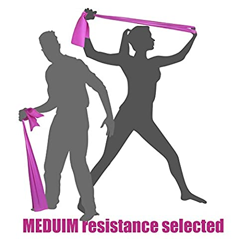 MEDIUM TENSION BANDS (Mainly for Women and also for Men with a Lighter Frame/Build) - Exercise Resistance Stretch Bands - LATEX FREE - 2 METRES - The Ultimate Portable Multi Gym Sports Equipment for Home Fitness Strength Training - Exercises Legs, Arms, Bicep, Tricep, Shoulder, Stomach, and Abdominal Workout. A Great general Body Toner and Trainer - The Ideal Tension Rubber Band for Pilates Foam Mat Exercises, Rehab, Yoga, Beachbody, Abs, Insanity, Asylum, Roller and P90X Weights Workout - These Resistance Bands are the best piece of Fitness Equipment and Accessories for Home Workouts and Resistance Training.