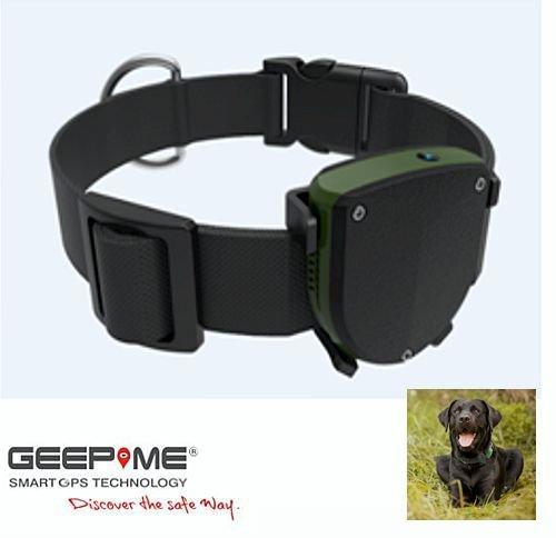 GeepMe TD-05 Tracker Pets - GPS Tracker, Tracking, GeoFence, Tiertracker, dt. kostenlose APP/dt. Service,Sicherheit für Hund / Katze / Pferd uvm., IP67 (wasserdicht), (OHNE Abhörfunktion)