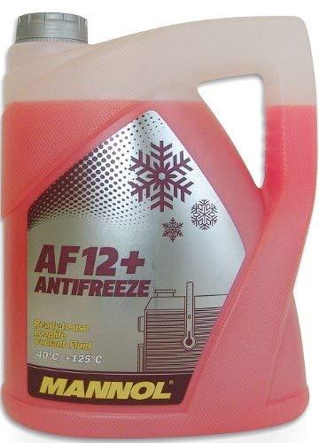 Kühlerfrostschutz G12+ Frostschutz