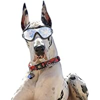 Dog Goggles Sunglasses Waterproof Windproof UV Protection For Medium Large Dogs Glasses - Vet Recommended Eye Protection (Black)