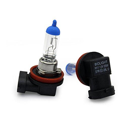 Preisvergleich Produktbild Jurmann® 2x Stück H11 55W 12V PGJ19-2 Glühlampen GAS 12V CLEAR / BLUE TOP UV-Kristallglas mit Gasfüllung Halogen Lampen Long Life Birnen Autolampen nach StVo zugelassen