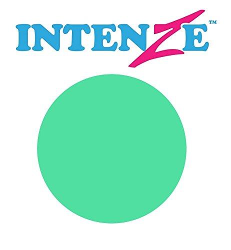 Original INTENZE Ink 1 oz (30 ml) Tattoofarbe Tattoo Farbe Tinte Color Tätowierfarbe Ink (1 oz (30 ml), Sea Foam Green)