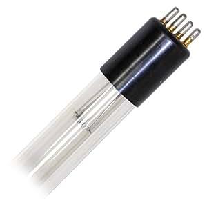 Philips Lampe fluorescente, Verre, transparent, 23 x 2 x 2 cm