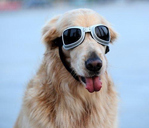 PETLESOÃ'® Large Dog Goggles Sunglasses UV Goggles Goggles Golden Retriever Goggles Square by Pet Leso