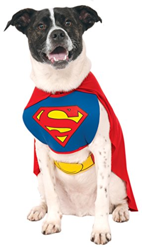 Kostüme Dress Fancy Dc (DC Comics Pet Costume, Superman, Small by)