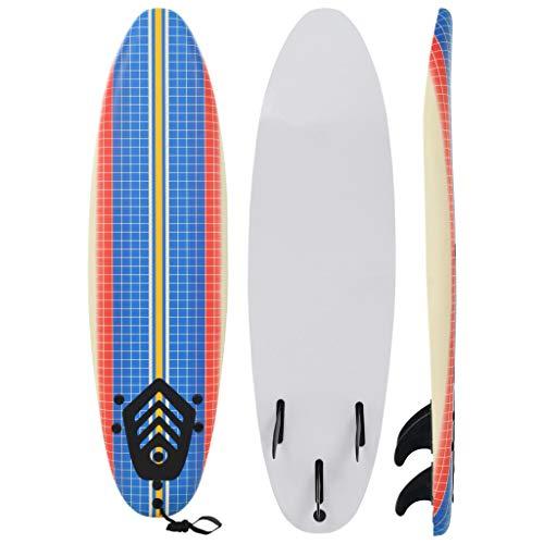 Festnight- Planche de Surf Multicolore pour Débutants Adultes et Enfants 170 cm