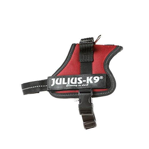Julius-K9, 162BR-MM, K9 Powergeschirr, Größe: Mini-Mini, bordeaux