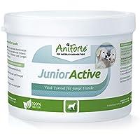 AniForte Junior Activos 250G específicamente para Cachorros y Perros jóvenes, Perro de Perrito Suplementos con vitaminas minerales Muchas El Revestimiento Comida Extra