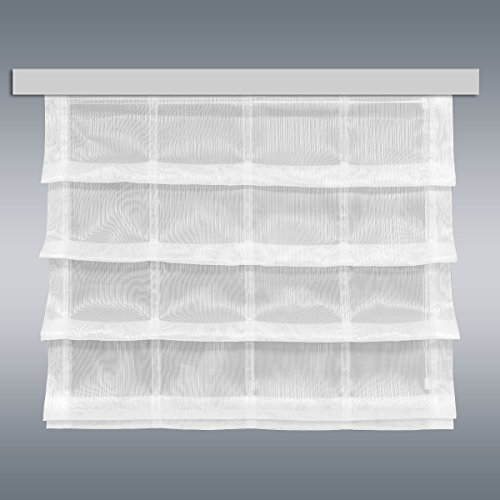 Preisvergleich Produktbild SeGaTeX home fashion Raffrollo Raffstore MAILIN Sekt 56 cm Hoch | 3 Feste Falten | Fertiggardine für Caravan Wohnwagen | Incl. PVC Flachprofil