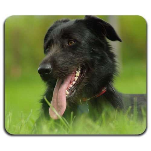 black-dog-smiling-home-pet-cute-animals-best-human-friend-mouse-pad-washable