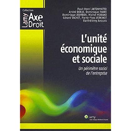 L'unité économique et sociale: Un périmètre social de l'entreprise