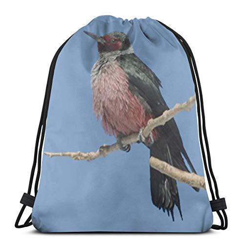 Desing shop Lewis Woodpecker Flagstaff 3D Print Drawstring Backpack Rucksack Shoulder Bags Gym Bag for Adult 16.9