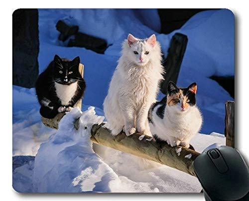Estera del ratón del Juego, cojín de ratón Lindo del Gato del Animal del Invierno de la Nieve, Estera del ratón para la computadora cat222