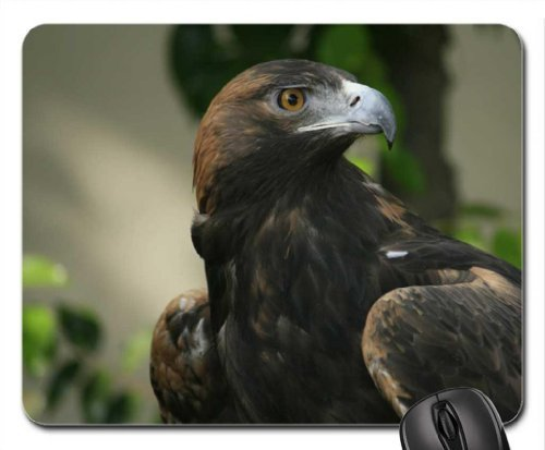atlantic-puffin-mouse-pad-mousepad-birds-mouse-pad