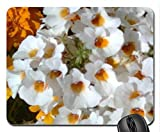 Nemesia Mouse Pad,Flowers Non-Slip Mouse Pad Office Competitive Mouse Pad 18X22cm