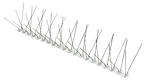 5 Metre Pack Bird Spikes Stainless Steel&Polycarbonate *THE BIRD-TECH ORIGINAL*