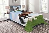 ABAKUHAUS Pferde Tagesdecke Set, Pferd Pacing auf Gras, Set mit Kissenbezug Waschbar, für Einselbetten 170 x 220 cm, Grün braun Blau