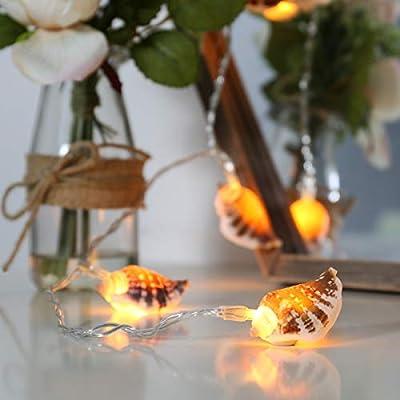 Muschel Lichterkette, 10 LEDs warmweiß, echte Muscheln, 1,5m, von Festive Lights