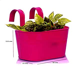 Cocogarden Metal Oval Railing Planter (Pink)