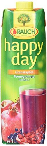 Happy Day Fruchtsaft, 1er Pack (1 x 1 l)