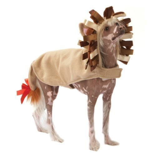 TOP Marques Collectibles Top Paw Löwe Hunde Kostüm, XL, Braun