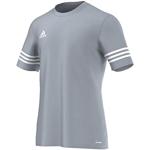 adidas Entrada 14 JSY, Camiseta para hombre, Gris (Silver/White), L, F50493