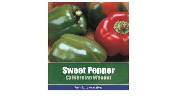 0dde8d6c5931 De Ree Sweet Pepper Californian Wonder Vegetable   Fruit Plant 95 Seeds