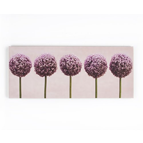 Row Of Alliums Purple Wall Art