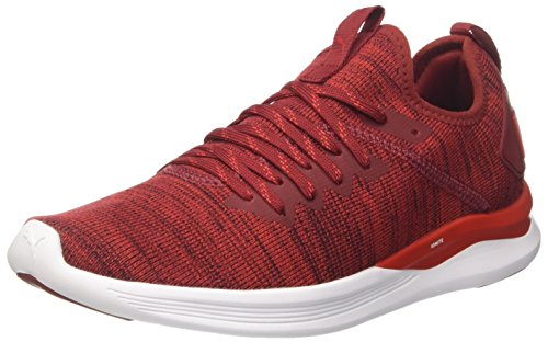 Puma Herren Ignite Flash Evoknit Cross-Trainer, Rot (Red Dahlia-High Risk Red-Puma White 01), 42 EU
