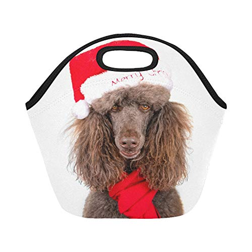 Insulated Neopren-Lunchpaket-Nahaufnahme-Porträt-Standardpudel-Weihnachten Sankt Große wiederverwendbare thermische starke Mittagessen-Taschen-Taschen für Brotdosen für draußen Arbeit, Büro, Schule