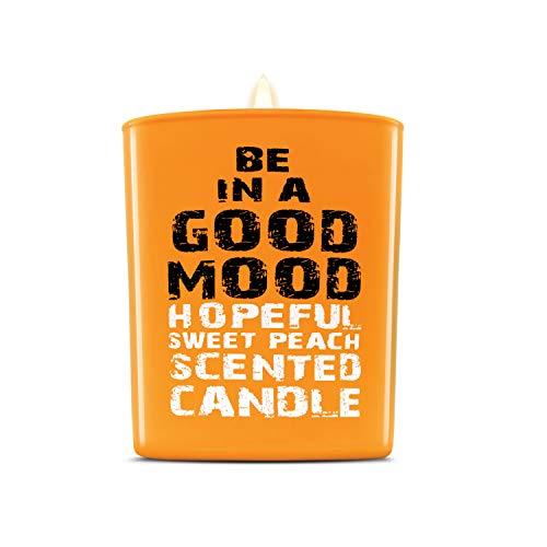 Aromatherapie Kerzen - Hand gegossen ungiftig Mineralwachs & Baumwolldocht (süßer Pfirsich) - Soja-mischung Säule Kerze