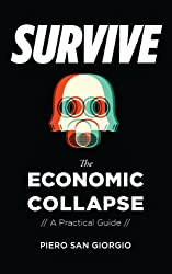Survive -- The Economic Collapse (English Edition)