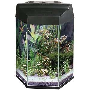 Aquarium HEXAGON II schwarz 20 Liter #408251