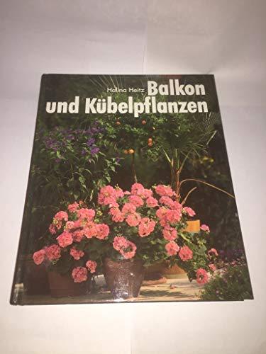 Balkon und Kübelpflanzen. So grünen und blühen sie am schönsten.