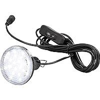 Esotec LED-Leuchte apropiado para Solar Multipower 5W Multipower Leuchte 121000