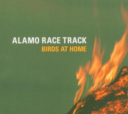 birds-at-home