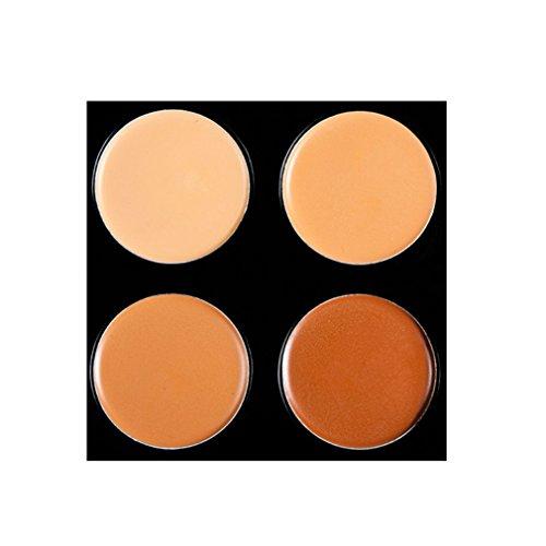 Pure Vie® Pro 1 Pcs Pennelli Trucco + 15 Colori Correttore Cosmetico Camouflage Palette Trucco - Adattabile a Uso Professionale che Privato