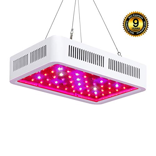 Roleadro LED Cultivo Interior 300W LED Grow Light