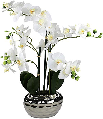 Decoline Kunstpflanze Orchidee XL mit Keramiktopf - ca. 53cm hoch (weiß)