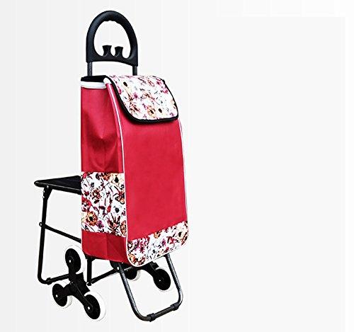 Piccola porta portatile a mano tirare un carrello con una sedia pieghevole anziani trolley per auto ( Colore : B )