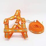 CWQYD Hundegeschirr Halsband Für Kleine Geschirr Mittelgroße Produkte Verstellbares Tierzubehör, Orange, S